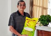 Hành trình vươn ra biển lớn của hạt gạo ngon nhất thế giới của Việt Nam