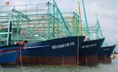 Tàu cá nằm bờ do không mua được bảo hiểm Ngư dân có thể kiện Công ty bảo hiểm Pjico