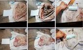 Bàng hoàng phát hiện thêm 7 bộ xương người trong lô cao su ở Tây Ninh