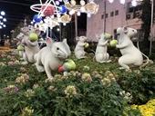 Hàng trăm tác phẩm Bonsai đặc sắc cùng hội ngộ tại Hội hoa xuân