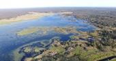 Cháy rừng ở Úc làm phát lộ hệ thống thủy sinh cổ đại già hơn Kim tự tháp Ai Cập