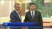 WHO tin tưởng khả năng kiểm soát dịch của Trung Quốc