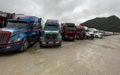 Còn tồn hàng trăm xe tải, 37 toa hàng trái cây xuất khẩu sang Trung Quốc