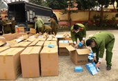 Phát hiện gần 147 000 chiếc khẩu trang y tế xuất lậu sang Trung Quốc
