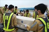 Kết luận nguyên nhân 39 người Việt tử vong trong container tại Anh