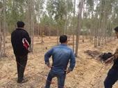 Nghi phạm sát hại dã man cháu bé 10 tuổi đã tự thiêu trong rừng
