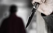 Phê chuẩn bắt tạm giam đối tượng đâm chết chiến sĩ công an