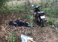 Nam nhân viên cây xanh chết bất thường trong vườn cây cảnh