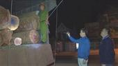 Dùng hồ sơ giả để vận chuyển gỗ lậu từ Đắk Lắk đi Tây Ninh