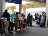 Gần 100 người từ Hàn Quốc vừa về đến Hải Phòng