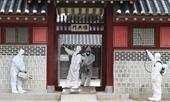 4 212 người nhiễm Covid-19 ở Hàn Quốc, Ý có 34 trường hợp tử vong