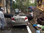 Hà Nội cây đổ đè bẹp xe ô tô, nhiều tuyến bị ngập nước