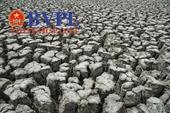 Hàng loạt hồ chứa nước tại Ninh Thuận cạn trơ đáy