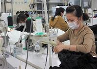 Nghiệp đoàn và doanh nghiệp Nhật Bản bảo vệ thực tập sinh Việt Nam trước dịch COVID-19