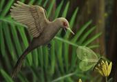 Phát hiện hóa thạch khủng long tí hon 99 triệu năm tuổi nhỏ hơn cả chim sâu