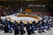 Việt Nam ủng hộ HĐBA giải quyết các thách thức về khủng bố và bạo lực cực đoan tại châu Phi