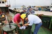 Khởi tố, bắt tạm giam thuyền trưởng buôn lậu ở Bà Rịa – Vũng Tàu