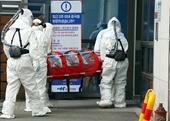Gần 9 000 ca tử vong do Covid-19 trên toàn cầu