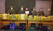 NÓNG Bắt quả tang đối tượng vận chuyển 246 kg ma túy đá