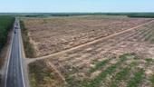 Kim Oanh Group chuẩn bị triển khai dự án 49,8 ha tại Long Thành