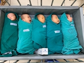 5 công dân chào đời trong khu cách ly Bệnh viện Bạch Mai