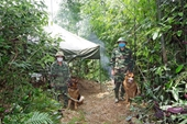 Phát hiện 20 trường hợp vượt biên trái phép vào nội địa Việt Nam