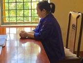 Truy tố người phụ nữ gây ra vụ lừa đảo lớn nhất ở Tuyên Quang