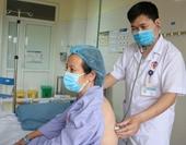 Người phụ nữ Quảng Ninh nguy kịch vì bị ong vò vẽ tấn công