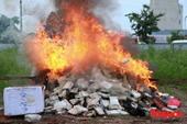 VKSND TP Mỹ Tho kiểm sát việc tiêu hủy vật chứng, tài sản