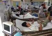 Ba người trong gia đình ở Quảng Ngãi bị ngộ độc nấm đã tử vong