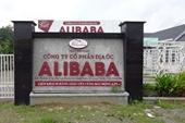 """Kê biên hàng trăm thửa đất công ty Alibaba làm """"dự án ma"""""""
