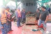 Phát hiện, bắt giữ 2 tàu cá vận chuyển lậu hơn 25 000 lít dầu