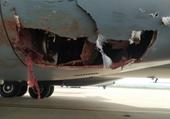 Máy bay vận tải quân sự tầm xa của Anh và Tây Ban Nha vỡ toác sau va chạm với  chim