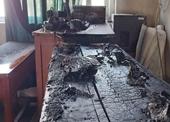Cháy phòng dạy nhạc của trường học ở Đà Nẵng