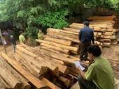 Tạm giữ chủ doanh nghiệp để điều tra gần 200m3 gỗ nghi lậu