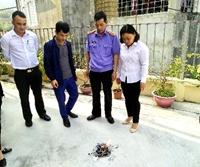 TAND cấp cao tại Hà Nội chấp nhận kháng nghị của Viện kiểm sát về xử lý vật chứng