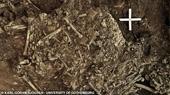 Phát hiện chấn động Con người mắc bệnh dịch hạch cách đây 5 000 năm