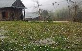 Mưa lớn vùng núi Bắc Bộ, cảnh báo lốc, sét, mưa đá, gió giật mạnh