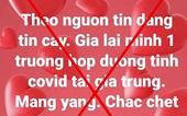 Một phụ nữ bị phạt vì đăng tải thông tin sai sự thật về dịch COVID-19 trên facebook