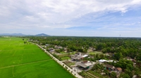 Huyện Thạch Hà được công nhận đạt chuẩn Nông thôn mới