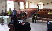 Tòa hoãn chấp hành hình phạt tù tùy tiện bị VKS kháng nghị