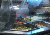 Aeon Việt Nam thông tin vụ chuột bò trên khay đồ ăn trong khu ẩm thực