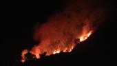 Đà Nẵng dập tắt cháy rừng trong đêm