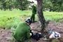 Phát hiện thi thể nữ bên dưới cây thông cô đơn trên đồi Thiên Phúc Đức