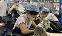 Điều kiện hỗ trợ người lao động tự do mất việc làm do COVID 19