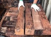 Phát hiện 60 container nghi là gỗ Giáng hương nhập lậu, trị giá 20 tỉ đồng