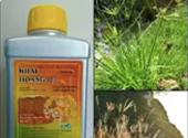 Suýt mất mạng vì bể nước bị đổ thuốc diệt cỏ