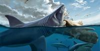 Kích thước siêu khủng của loài cá mập khổng lồ tiền sử Megalodon lần đầu được tiết lộ