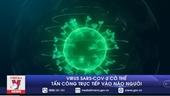 Virus SARS-CoV-2 có thể tấn công trực tiếp vào não người