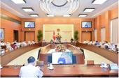 Cân nhắc thực hiện thí điểm tổ chức lực lượng tham gia bảo vệ an ninh trật tự ở cơ sở